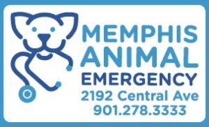 MAE logo cropped