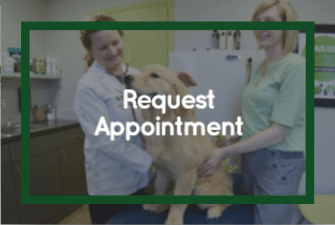 Memphis Animal Hospital - Request Appointment